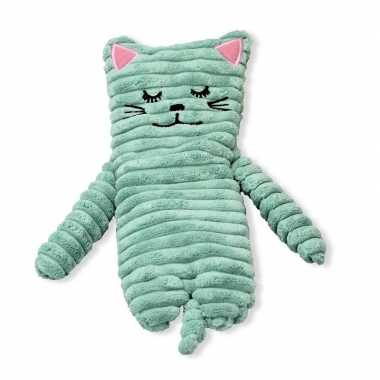 Magnetron warmte knuffel kat/poes mintgroen 24 cm