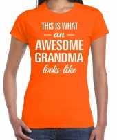 Awesome grandma oma cadeau t shirt oranje dames