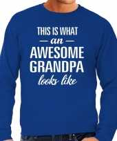 Awesome grandpa opa cadeau sweater blauw heren