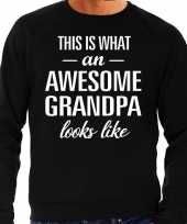 Awesome grandpa opa cadeau sweater zwart heren